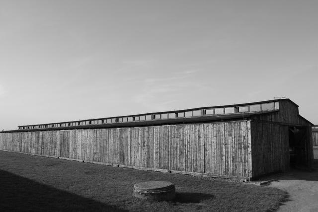 2008-Auschwitz-111