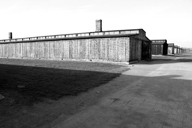 2008-Auschwitz-117