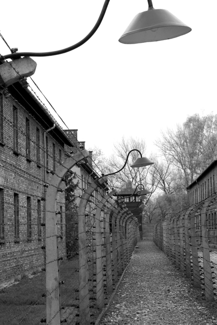 2008-Auschwitz-18
