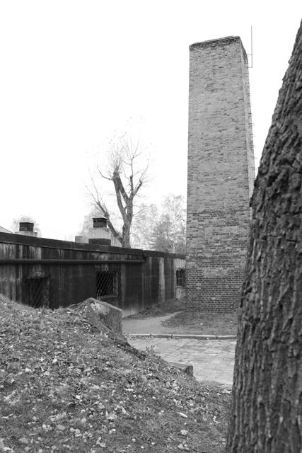 2008-Auschwitz-26