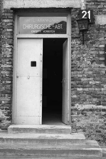 2008-Auschwitz-29