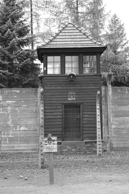 2008-Auschwitz-30