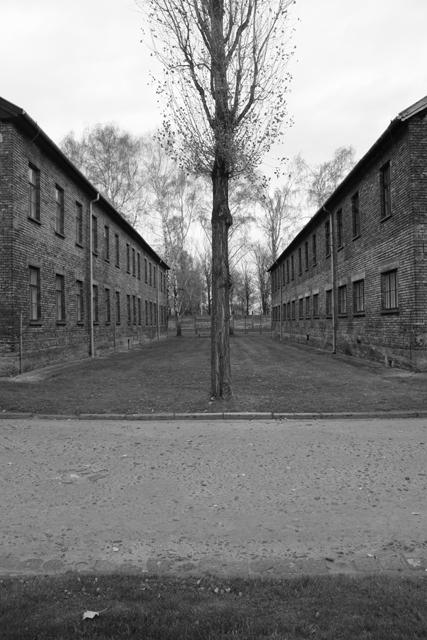 2008-Auschwitz-37