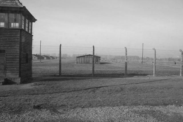 2008-Auschwitz-49