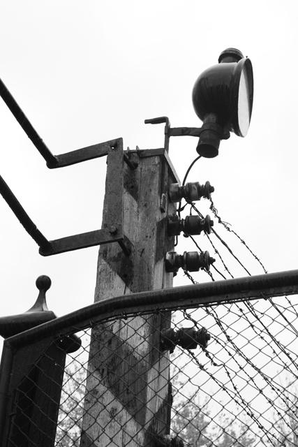 2008-Auschwitz-6