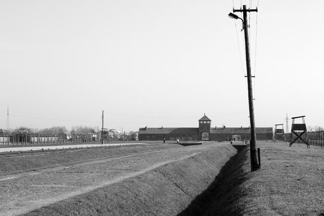 2008-Auschwitz-63