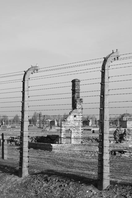 2008-Auschwitz-65