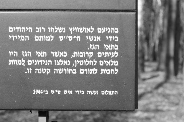 2008-Auschwitz-69