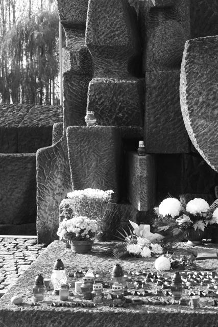 2008-Auschwitz-91