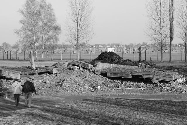2008-Auschwitz-93