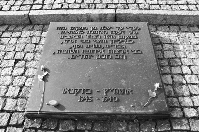 2008-Auschwitz-94