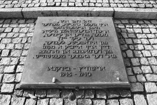 2008-Auschwitz-96