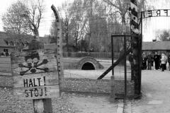 2008-Auschwitz-10
