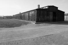 2008-Auschwitz-115