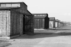 2008-Auschwitz-116