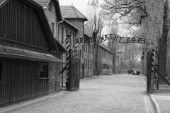 2008-Auschwitz-13
