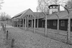 2008-Auschwitz-16