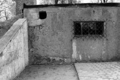 2008-Auschwitz-24