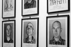 2008-Auschwitz-31