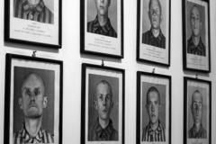 2008-Auschwitz-32