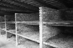 2008-Auschwitz-41
