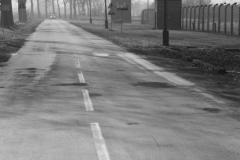2008-Auschwitz-48