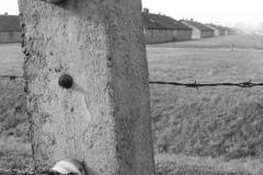 2008-Auschwitz-52