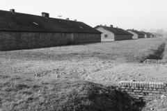 2008-Auschwitz-53