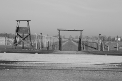 2008-Auschwitz-64