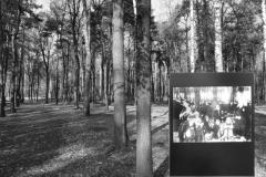 2008-Auschwitz-68
