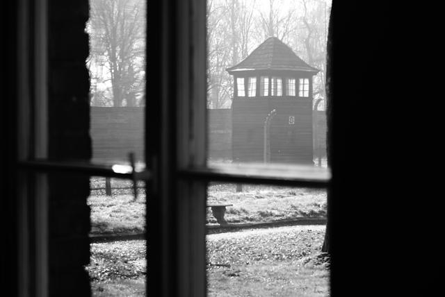 2010-Auschwitz-19