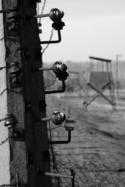 2010-Auschwitz-42
