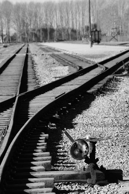 2010-Auschwitz-49