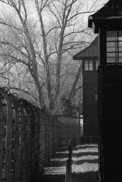 2010-Auschwitz-5