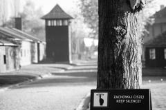 2010-Auschwitz-3