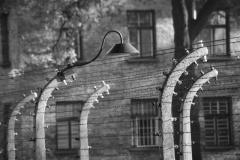 2010-Auschwitz-4