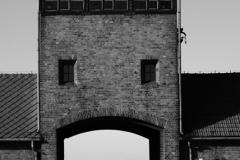 2010-Auschwitz-43