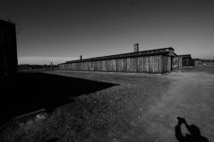 2010-Auschwitz-56