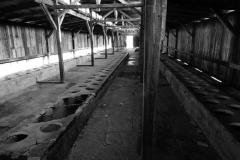 2010-Auschwitz-58