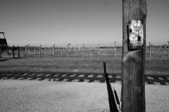 2010-Auschwitz-59