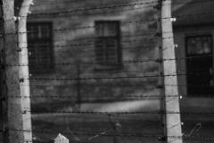 2010-Auschwitz-6