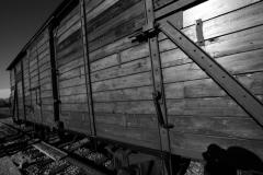 2010-Auschwitz-60
