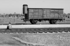 2010-Auschwitz-64