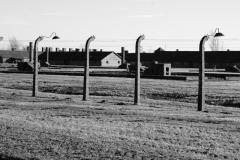 2010-Auschwitz-72