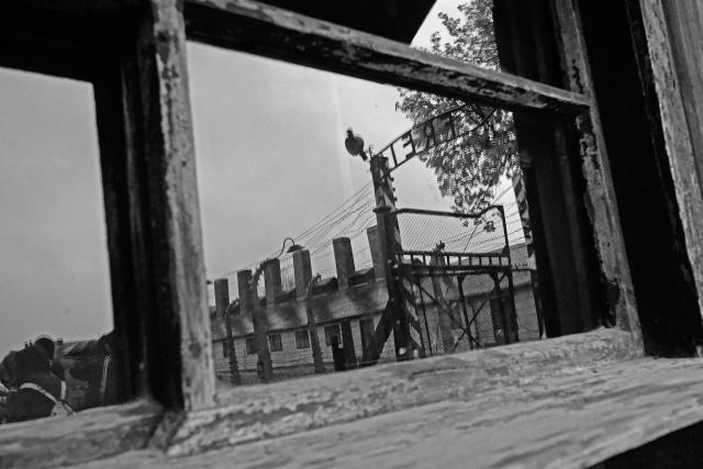100_Auschwitz_2012