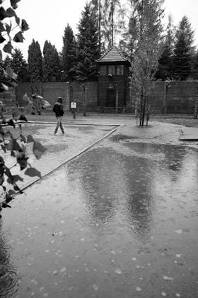 12_Auschwitz_2012