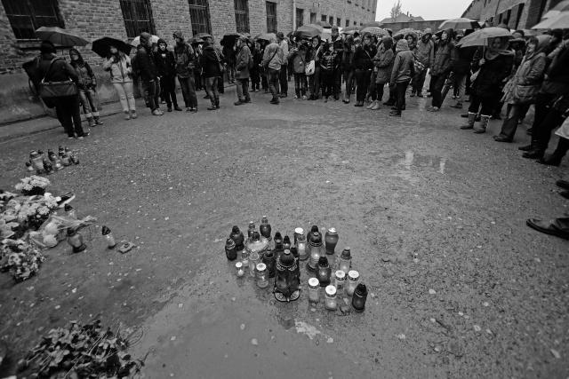 16_Auschwitz_2012
