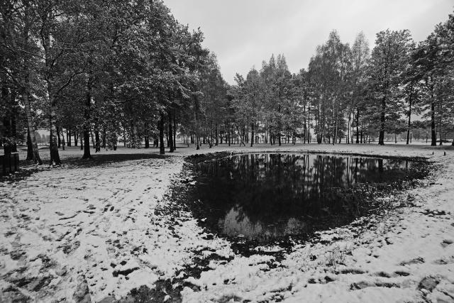 36_Auschwitz_2012