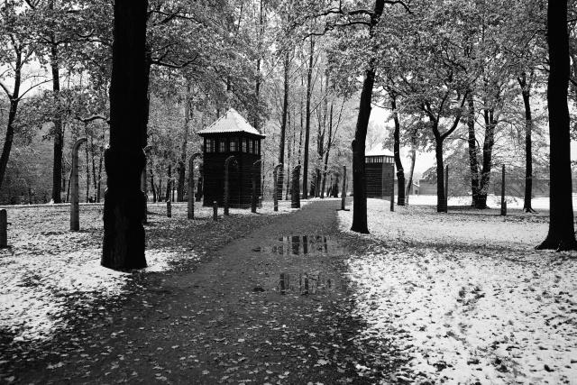 39_Auschwitz_2012
