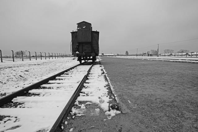 40_Auschwitz_2012
